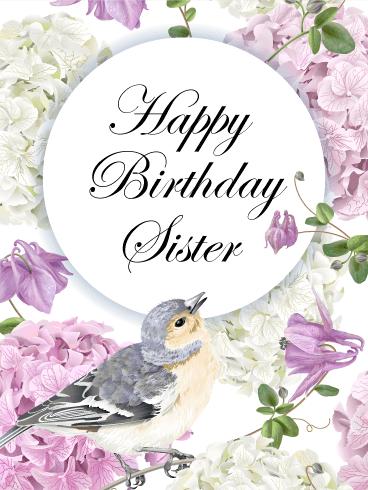 Purple hydrangea happy birthday card for sister birthday purple hydrangea happy birthday card for sister m4hsunfo