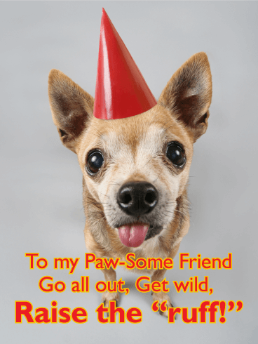 Party Animal Funny Birthday Card For Friends Birthday Greeting